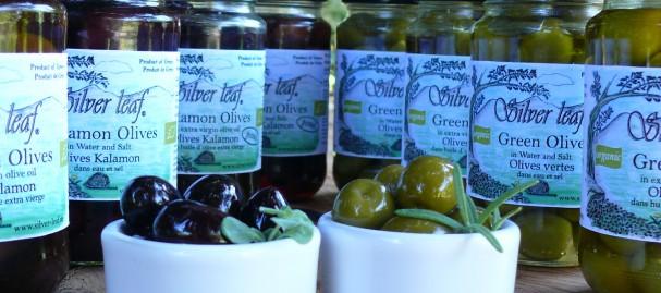 Silver Leaf Organic Olives